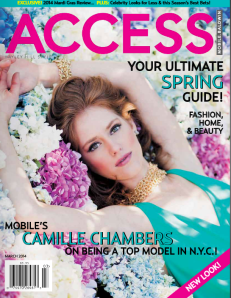Access Cover March 2104